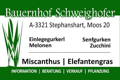 Bauernhof Schweighofer
